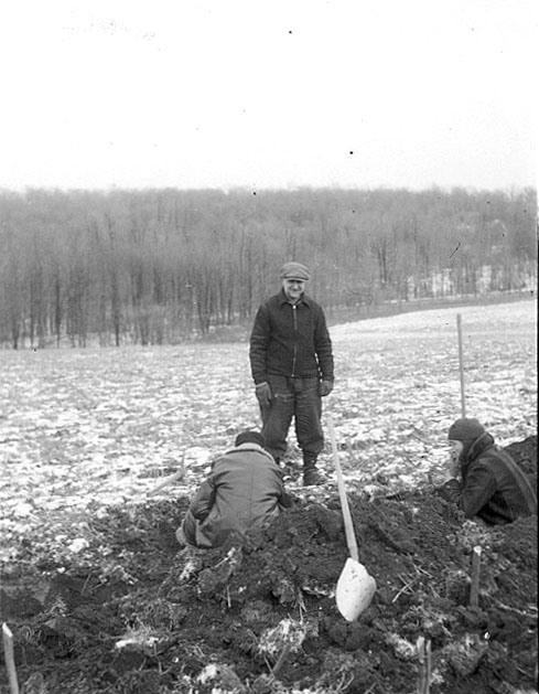 B8240_powell 1 excavation